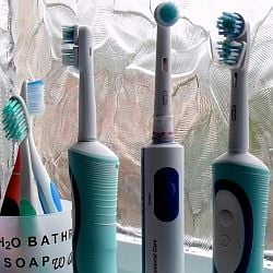 Toothbrushes (photo by K J Payne)