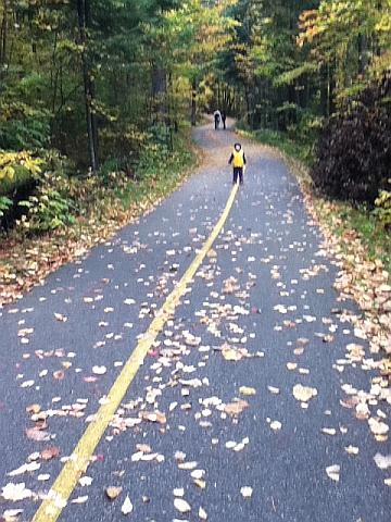 Gatineau Park in fall - the bike path