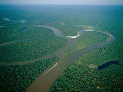 Amazon River, Amazon Jungle, Brazil
