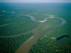 The Amazon River: Facts and History