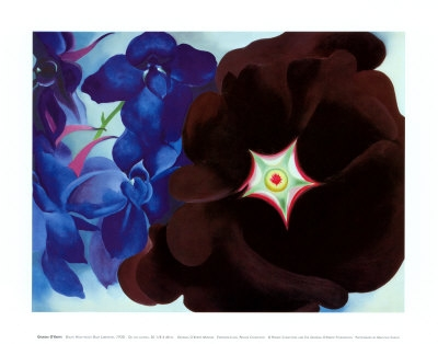 Black Hollyhock Blue Larkspur, 1930