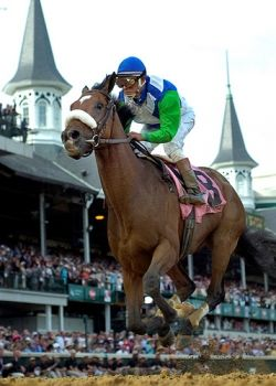 Run for the Roses Kentucky Derby