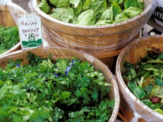 Parsley, chives, cilantro are all included in  Spring mixes