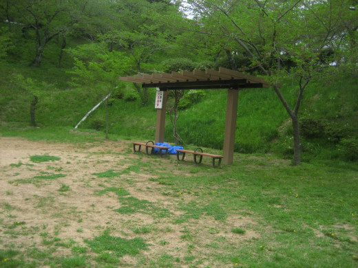 After a tiring climb up the stairs to Hiyoriyama park, I really enjoyed the peacefulness there.