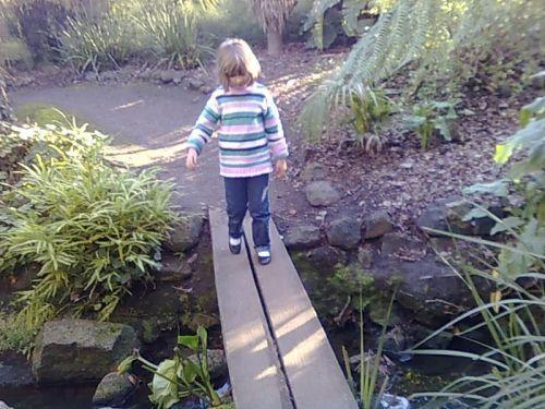 Bridge to Fairyland