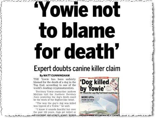 Yowies are falsely blamed for small tragedies