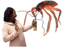 Perhaps if God were a giant cockroach, disputes could be settled with an industrial-sized can of Raid and applications of OFF bug spray.
