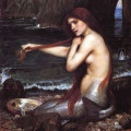 Mermaid Pictures Images Photos