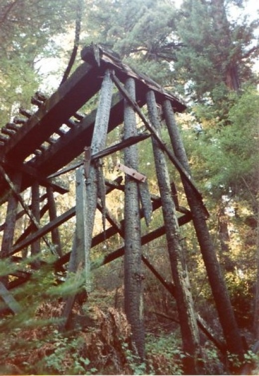 An abandoned train trestle still stands amongst the trees.