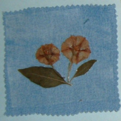 How to Make Coasters and Bookmarks with Flowers, Leaves, and Old Cloth