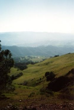 Rolling hills in the East Bay, California