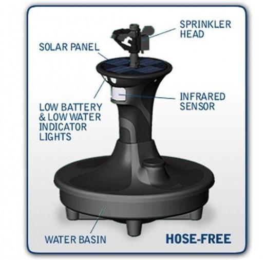 Hose-free motion sprinkler