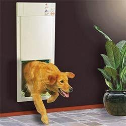PX2 Electric Big Dog Door