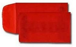250 Red #1 Coin Translucent Envelopes Size 2 1/4 x 3 1/2