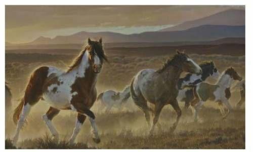 Desert Horse Mural