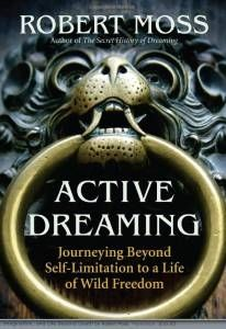 Active Dreaming: