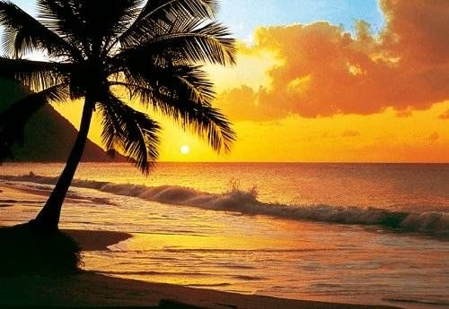 Pacific Sunset Beach Wall Mural