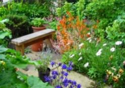 Money saving gardening tips - Part 2