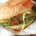 101 Veggie Burger Recipes - The Best In Meat Free Burgers!