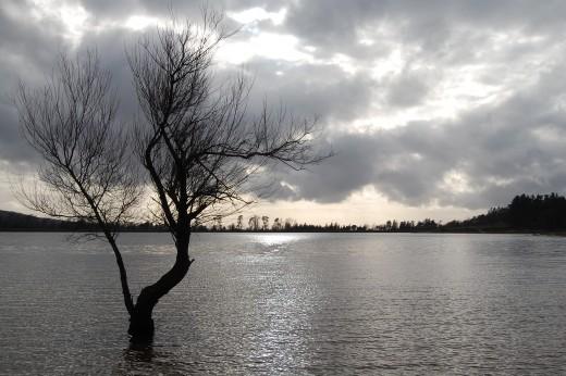 Lac de St Ferreol