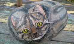 Painting Rocks - Cats & Dogs
