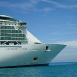 Wild Ride on Freedom of the Seas Cruise Ship