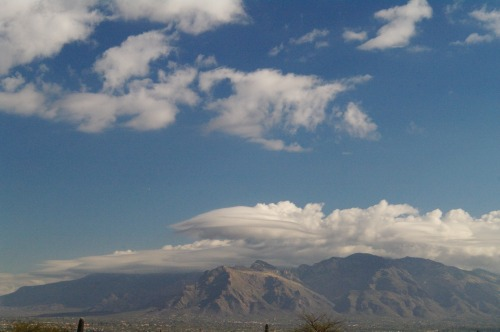 Some lenticular clouds over the Catalina Mountains.