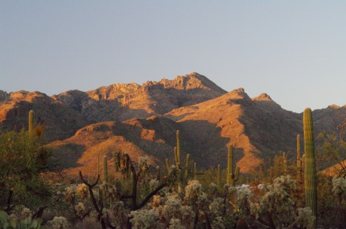 Sunset happening on the Catalina Mountains.