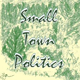 This page chronicles my experience with small town politics in a tiny Northern Californian village where I was involved with the local Chamber of Commerce.