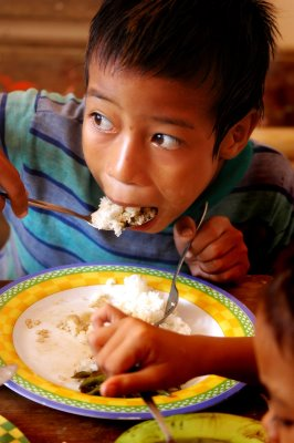 absence of nutritious food