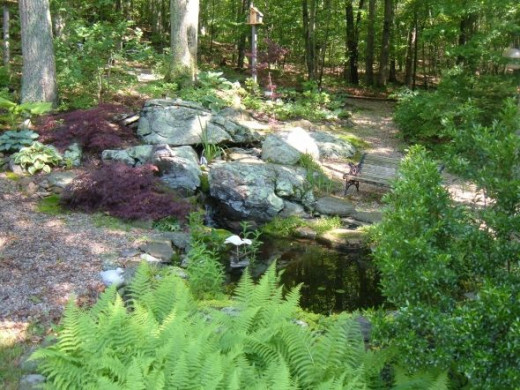 Gardening For Wildlife: How To Create A Certified Backyard ...
