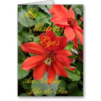 To see this and other poetry cards in my Zazzle store please click the link and feel free to explore.