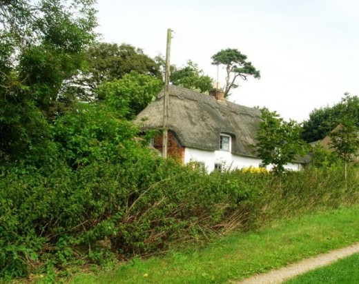 This cottage near Bag Enderby is one of several surviving thatched cottages in this part of Lincolnshire.