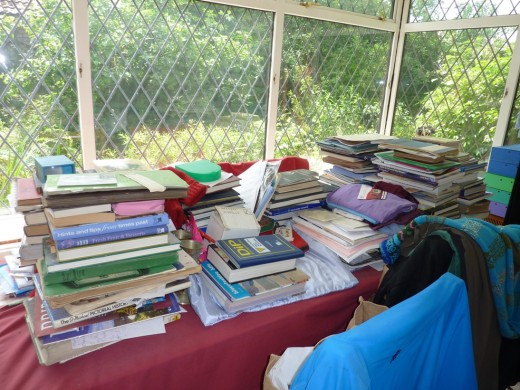 A bookish view into the garden