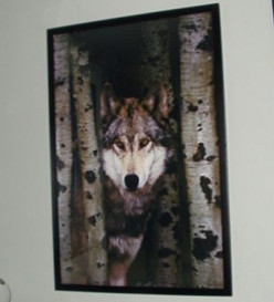 How to Frame and Hang Posters, How to Decorate With Posters