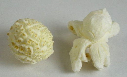 Mushroom-type popcorn (left) is used in confectionery products; butterfly-type popcorn (right) is preferred for eating out-of-hand.
