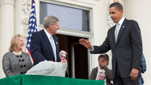 President Barack Obama Officially Pardons The Thanksgiving Turkey, called COURAGE, in 2009. Presented by the National Turkey Federation, this is a tradition in which American Presidents participate. Start a discussion among the kids about turkeys.