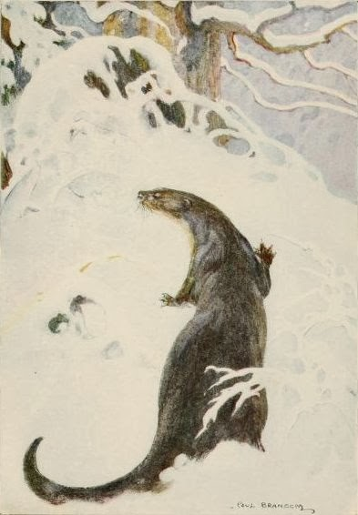 The Otter through the Wild Wood in the Snow. 1913. Page 94.By Bransom, Paul, illustrator, [Public Domain], via Wikimedia Commons