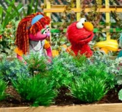 Lily Sesame Street Muppet
