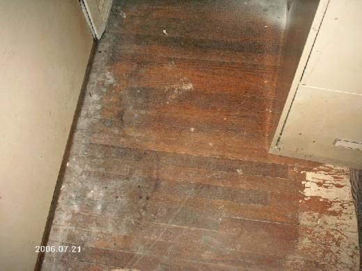 Renewing Our Hardwood Floor