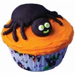 Friendly Spider Cupcake