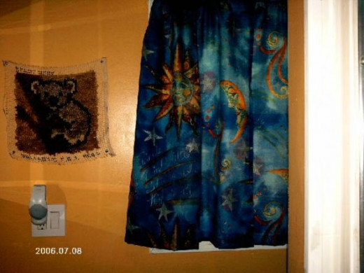 Curtains From A Shower Curtain