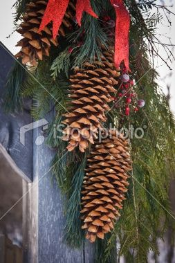 Use your craft wire to dangle a few extra long pine cones from the top center of your wreath