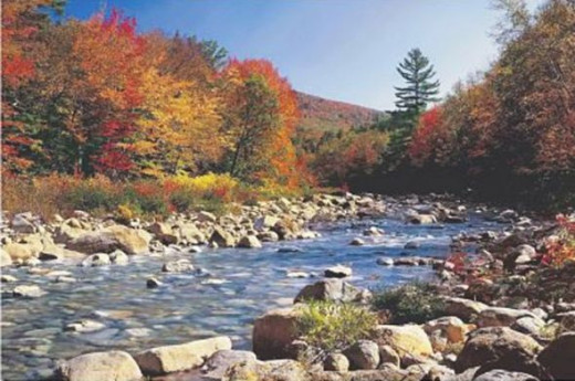 Autumn Brook (River in Fall) Art Poster Print