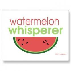 watermelon whisperer postcard