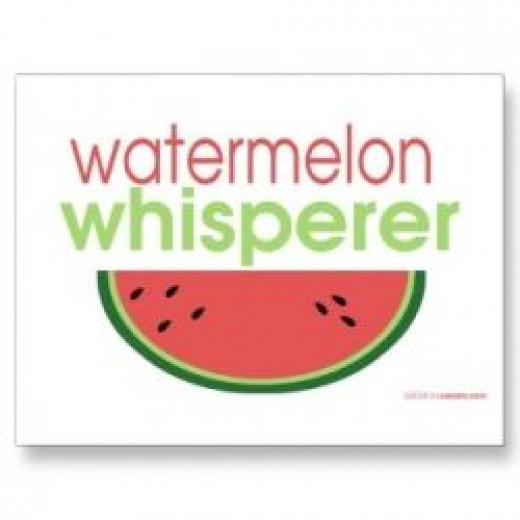 watermelon whisperer postcard