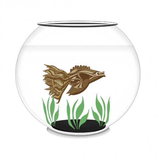 Fish swimming in fish bowl.