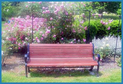 Maplewood Garden Rochester
