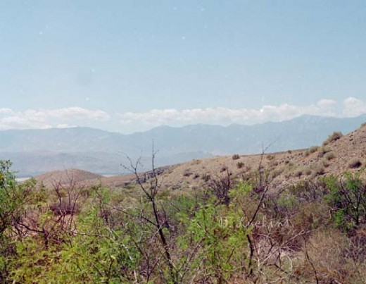 Coachella Valley Preserve, looking at the San Gorgonio area.