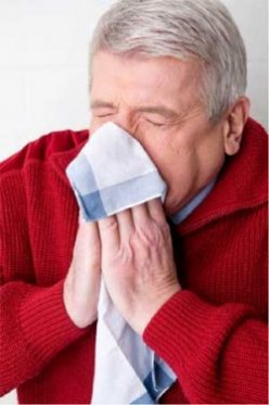 Quiz - Take This Flu or Influenza Quiz